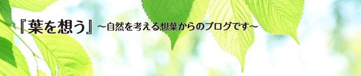 『葉を想う』~自然を考える想葉からのブログです~